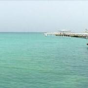 Vista para praia/oceano