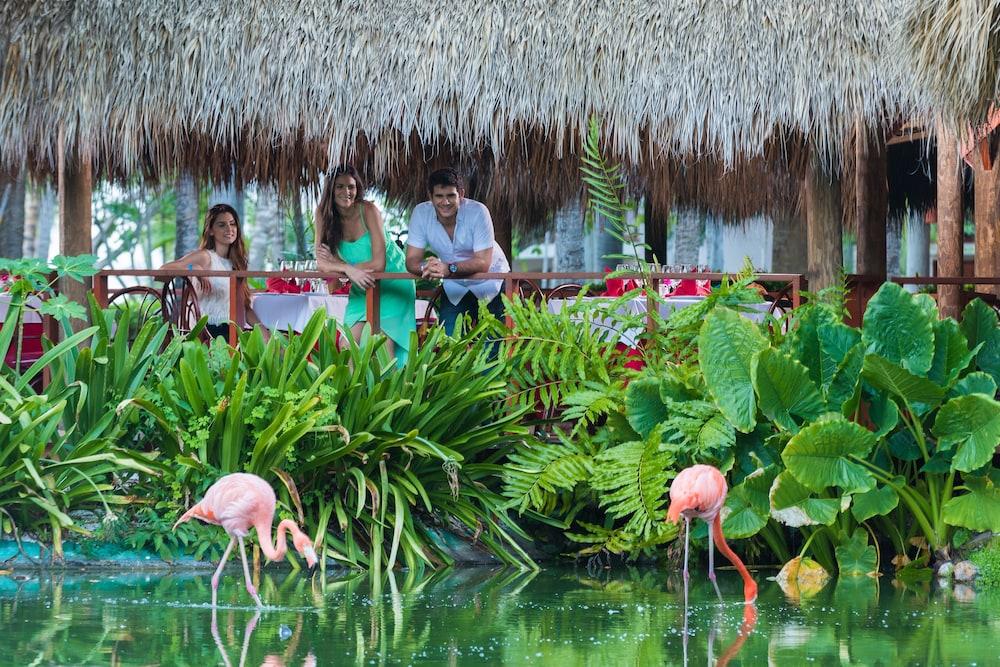 """Attēlu rezultāti vaicājumam """"Natura Park Beach Eco Resort & Spa 4*"""""""