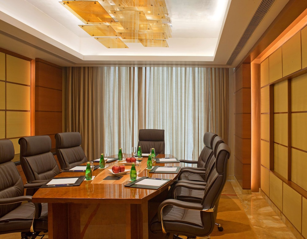 Meeting Facility, Radisson Blu Plaza Delhi Airport