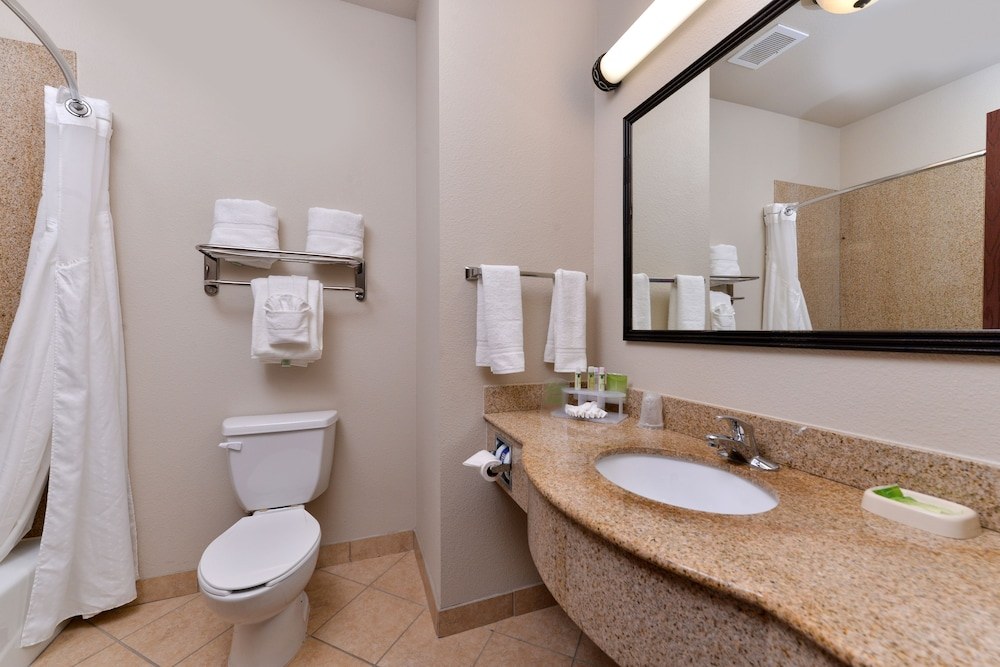 Bathroom, Holiday Inn Express Hotel & Suites Sherman Highway 75, an IHG Hotel
