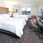 Holiday Inn & Suites Ann Arbor Univ Michigan Area