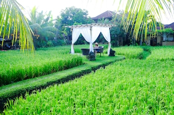 Bali Holidays 2019 Book Cheap Packages To Bali Wotif