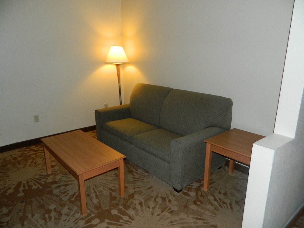 Living Room, Best Western Plus New Cumberland Inn & Suites