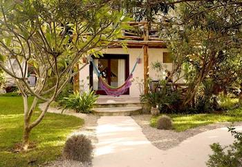 Calle Igualdad Costado De Sec Tec, 77310 Isla Holbox, Mexico.