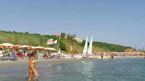 Plage privée, chaises longues, parasols, bar de plage