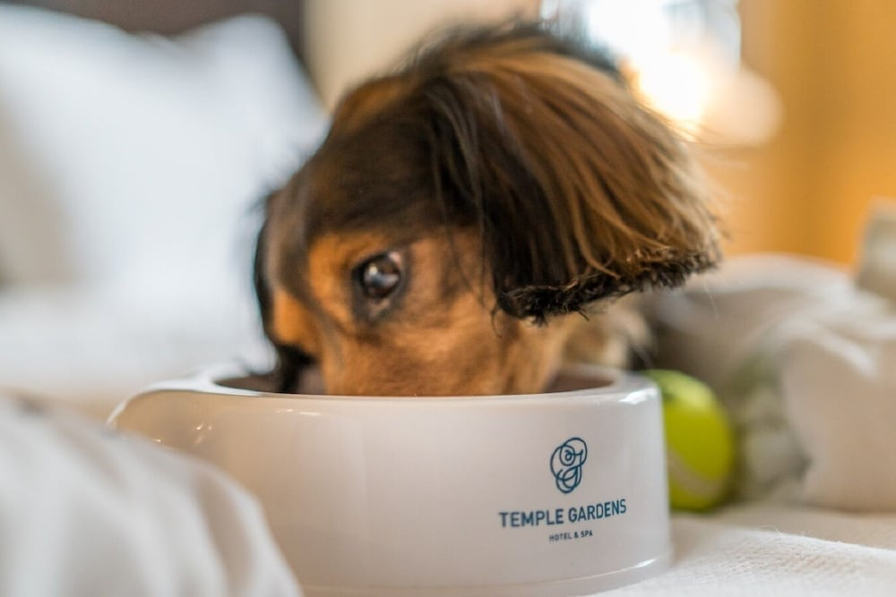 Pet-Friendly, Temple Gardens Hotel & Spa