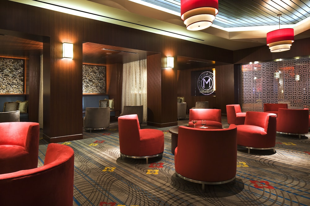 Fabiana seveso casino palace