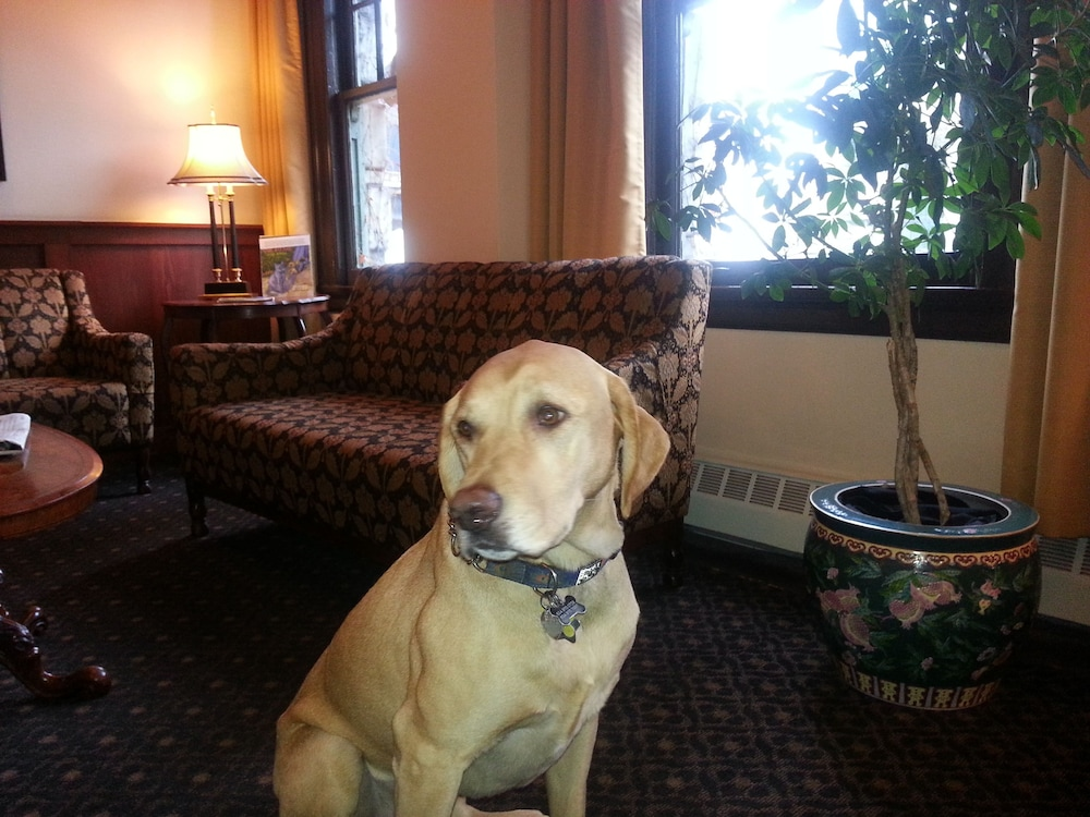 Pet-Friendly, Sylvia Hotel