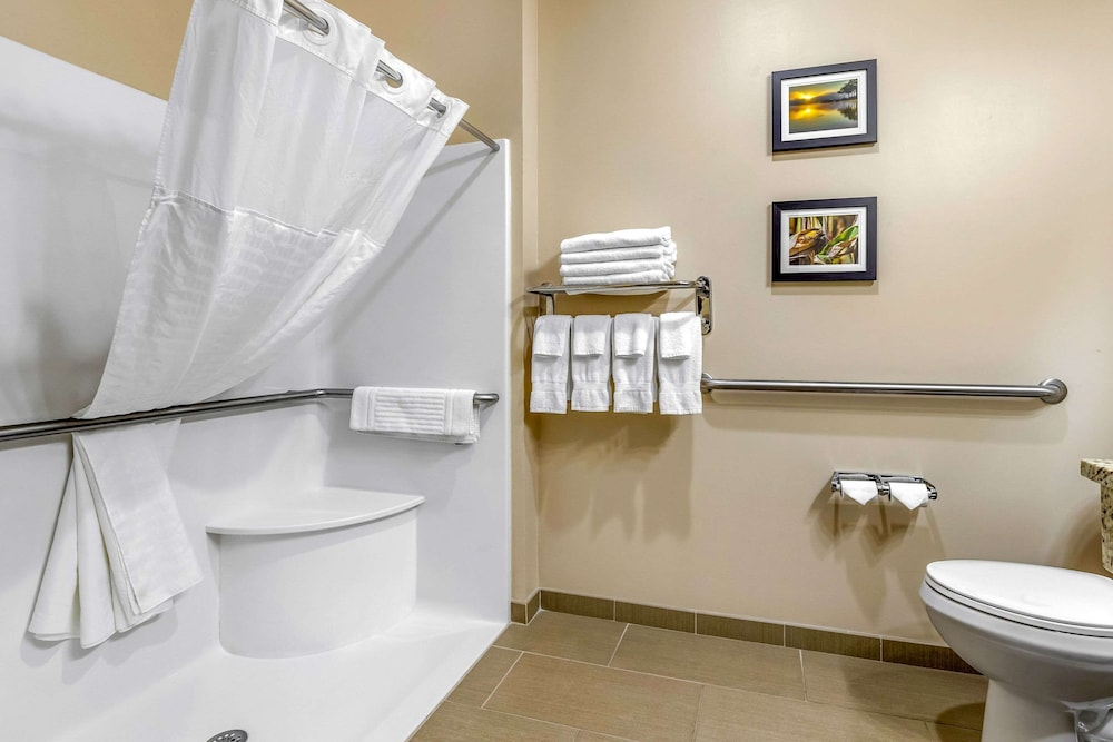Bathroom, Comfort Inn & Suites Davenport - Quad Cities
