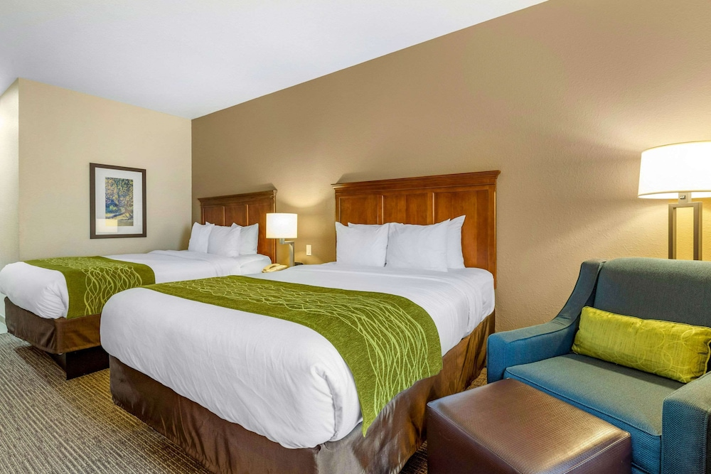 Room, Comfort Inn & Suites Davenport - Quad Cities