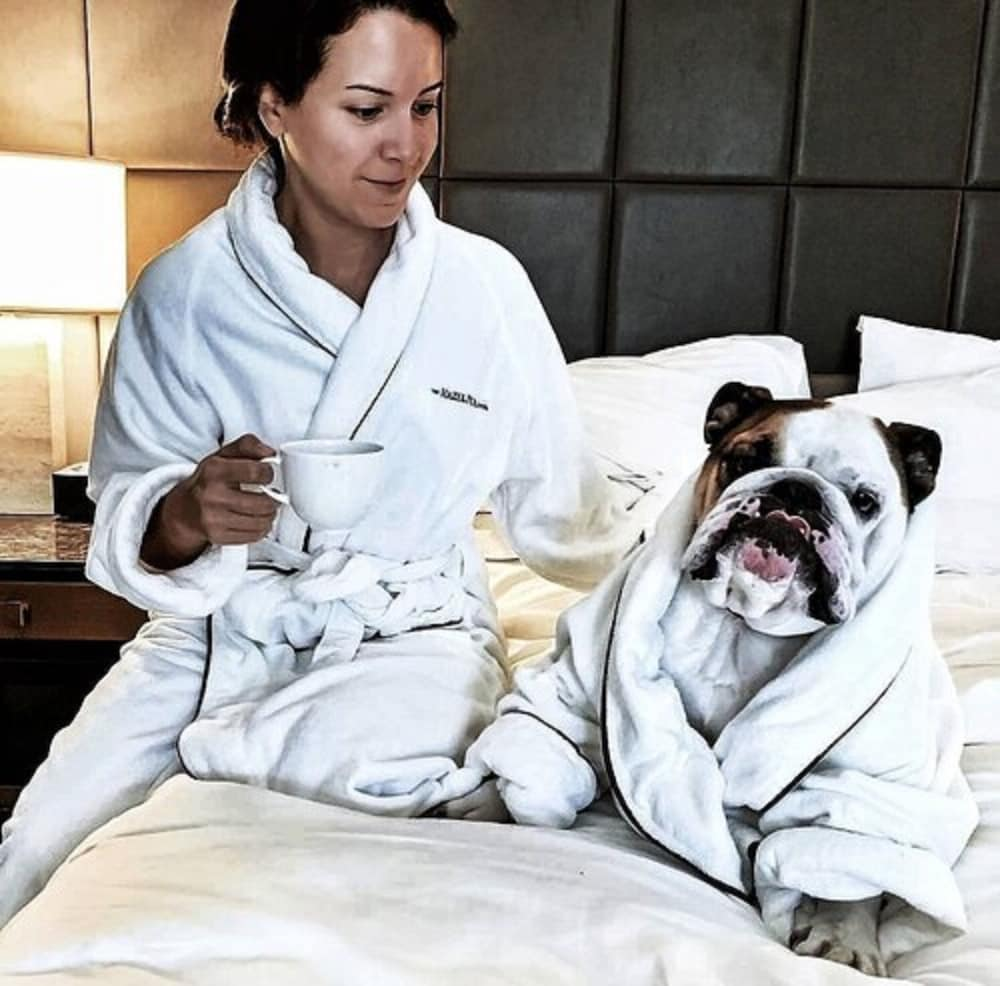 Pet-Friendly, The Hazelton Hotel Toronto