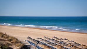 Plage à proximité, serviettes de plage, 3 bars de plage