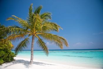 Biyadhoo Island Resort Reviews Photos Rates Ebookers Com