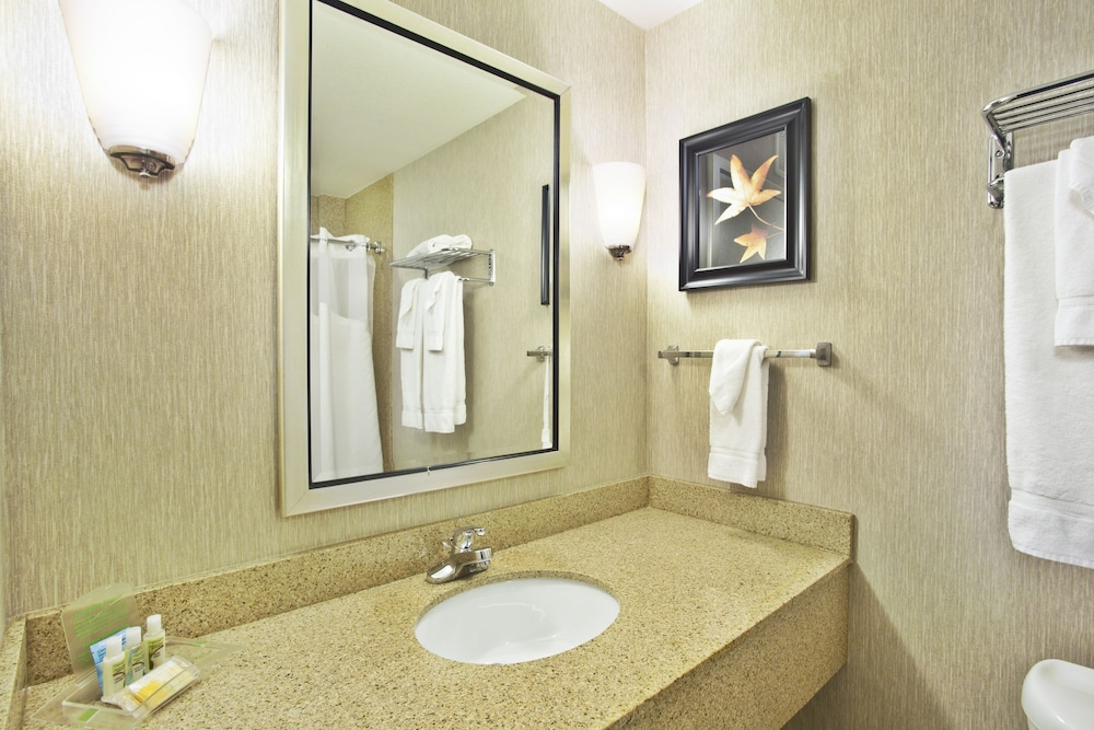 Bathroom, Holiday Inn & Suites Green Bay Stadium, an IHG Hotel