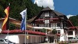Flair Hotel Adlerbad - Bad Peterstal-Griesbach Hotels