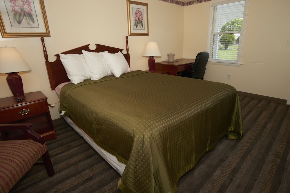 Room, Knights Inn Centerville