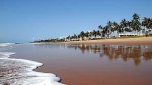 Aan het strand, ligstoelen aan het strand, beachvolleybal