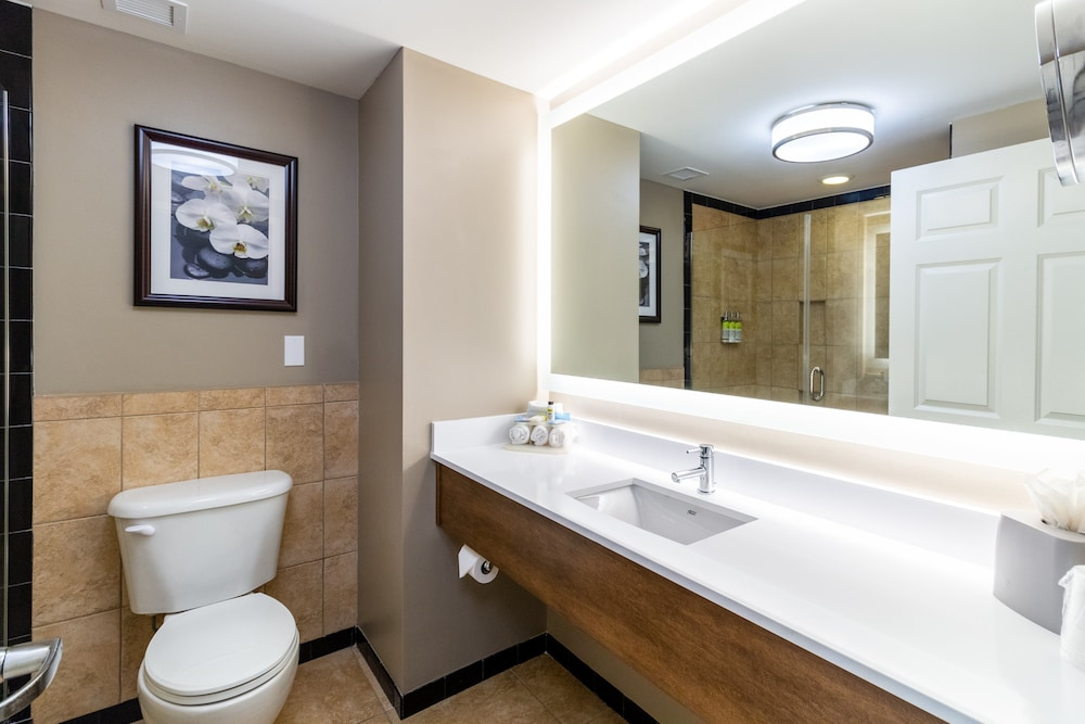 Bathroom, Holiday Inn Express Historic District