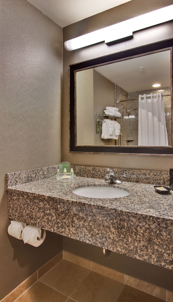 Bathroom, Holiday Inn Ontario Airport