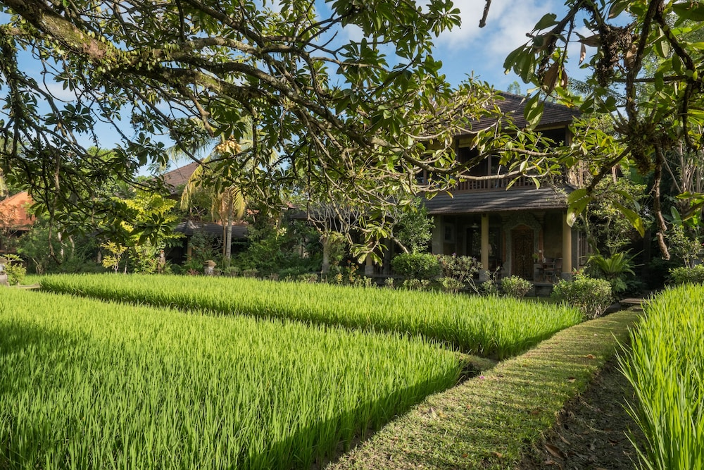 ananda cottages 2018 pictures  reviews  prices   deals ananda cottages ubud reviews ananda cottages ubud indonesia