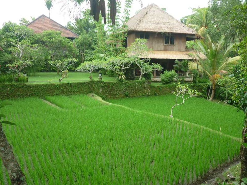 Book ananda cottages ubud hotel deals for Cottage bali
