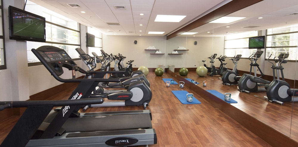 Fitness Facility, Holiday Inn Santiago - Airport Terminal