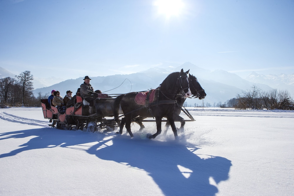 Horse Riding, Grand Hotel Zell Am See