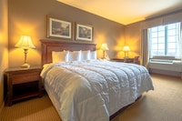 Deluxe Suite, 1 King Bed with Sofa bed, Refrigerator & Microwave