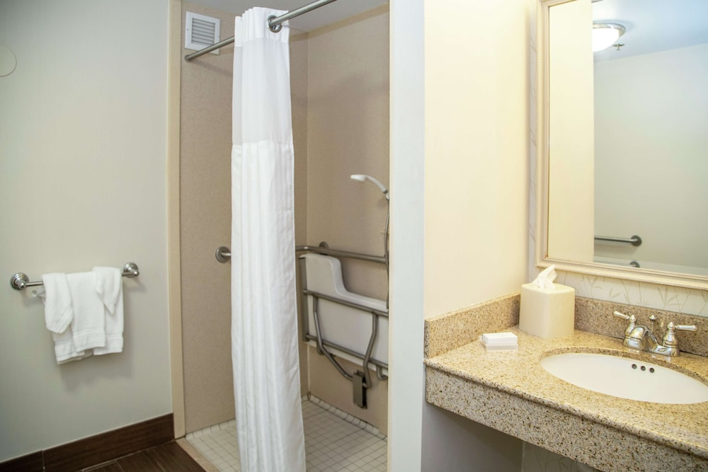 Bathroom, Hampton Inn & Suites Blairsville