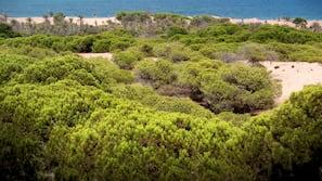 Ubicación a pie de playa, arena blanca y toallas de playa