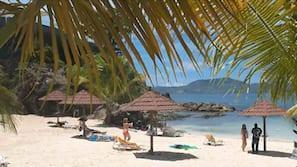 Plage à proximité, plongée sous-marine, planche à voile, bar de plage