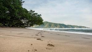 Beach nearby, free beach shuttle, sun loungers, scuba diving