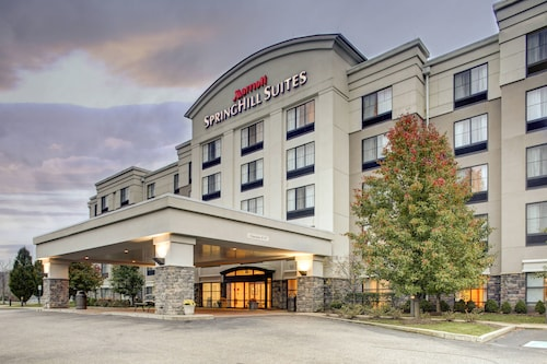 SpringHill Suites by Marriott Wheeling Tridelphia Area