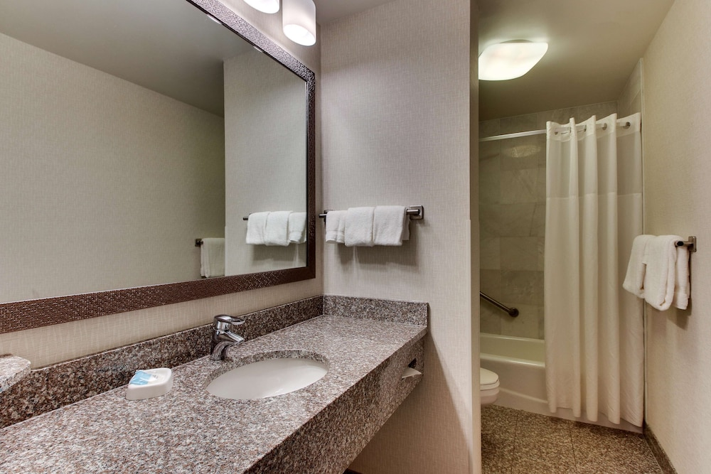 Bathroom, Drury Inn & Suites Meridian