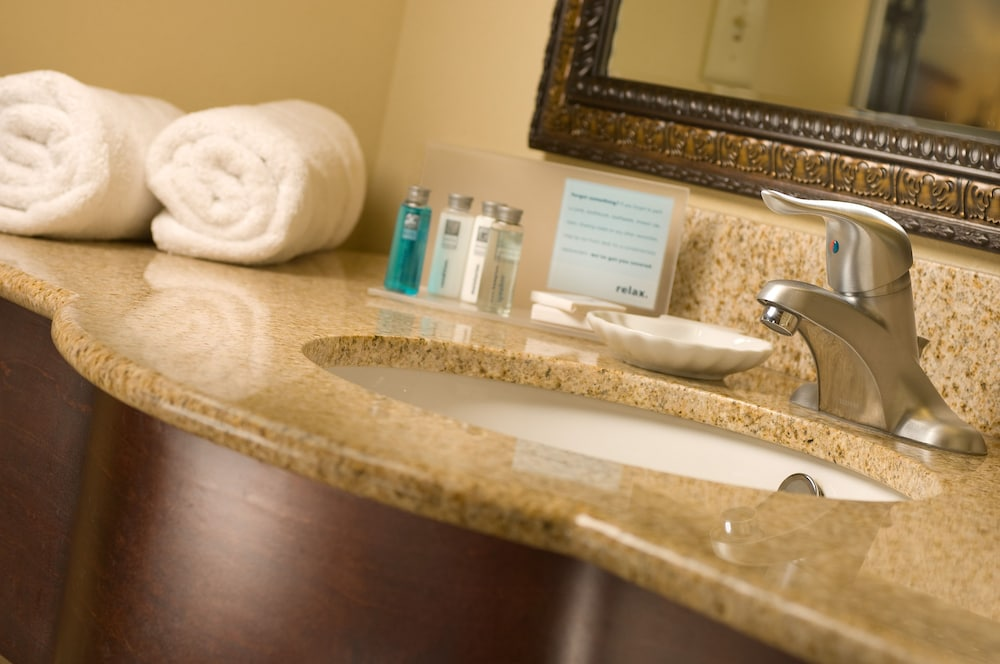 Bathroom, Hampton Inn & Suites Lakeland-South Polk Parkway