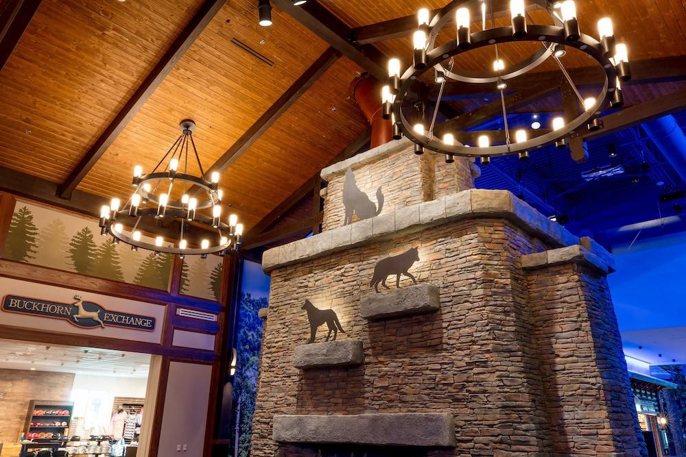 Great Wolf Lodge Illinois in Gurnee   Cheap Hotel Deals