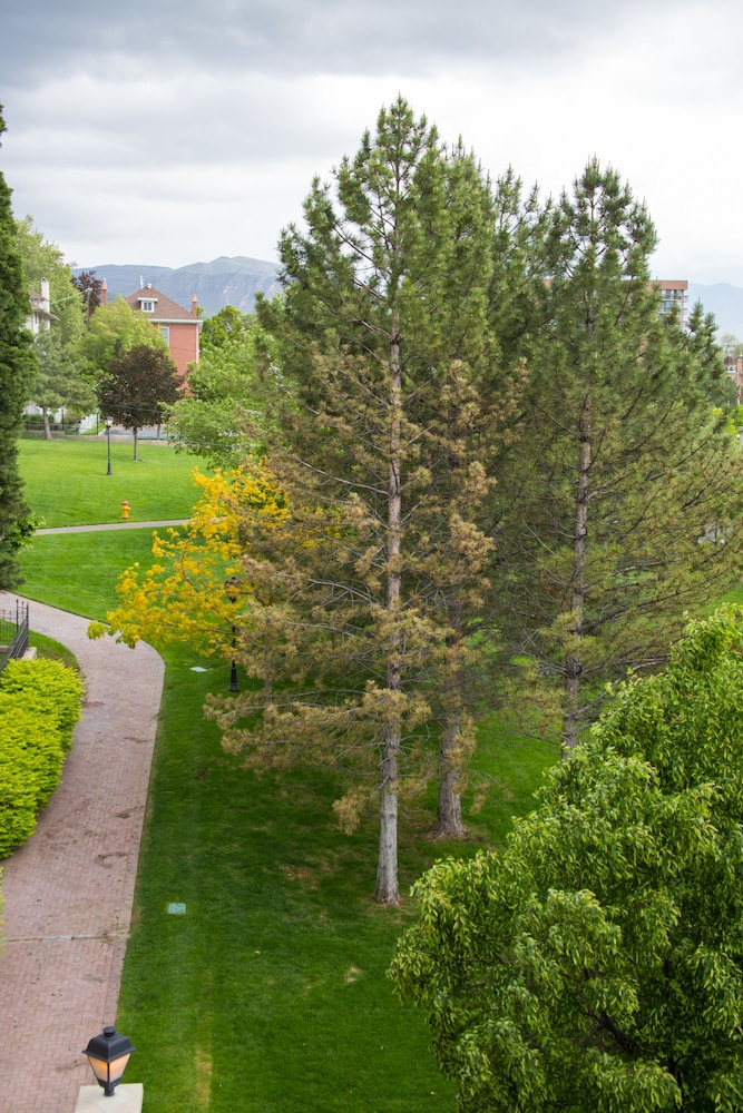 Property Grounds, The Kimball at Temple Square