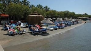 Plage privée, chaises longues, parasols, ski nautique
