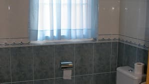 Bathtub, deep soaking tub, hair dryer, bidet