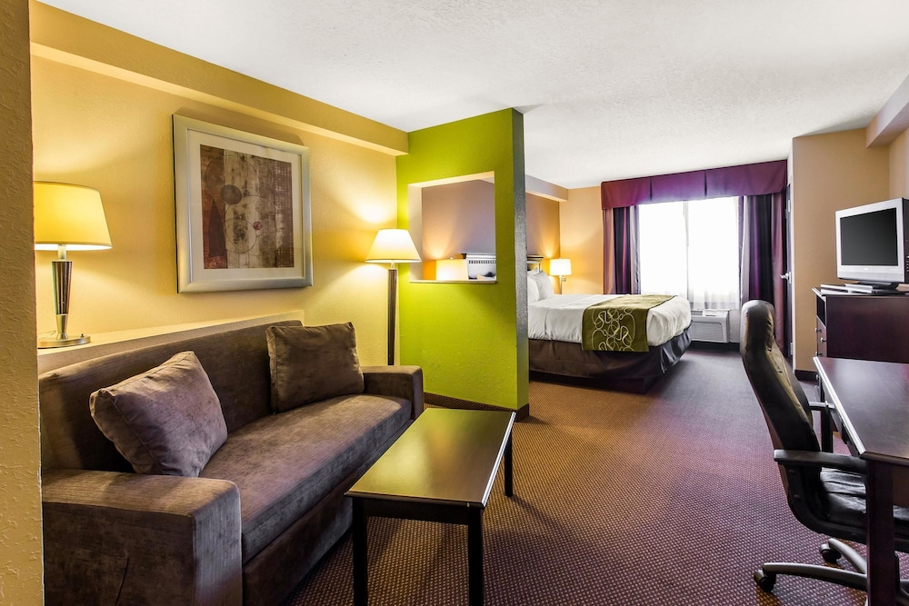 Room, Comfort Suites Forsyth near I-75
