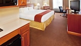 Holiday Inn Express & Suites Sheldon - Sheldon Hotels
