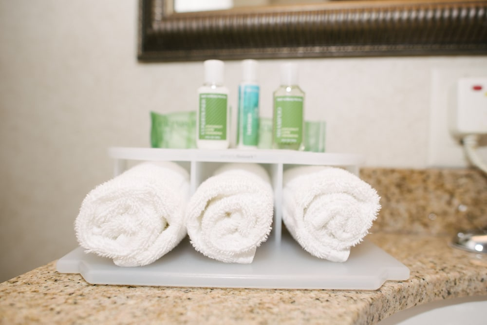 Room Amenity, Holiday Inn Express Hotel & Suites Custer, an IHG Hotel