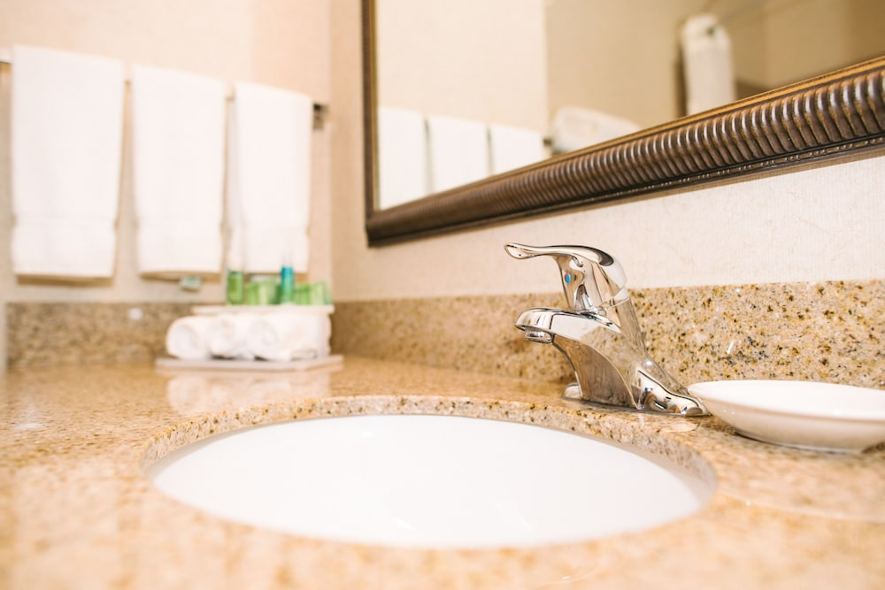 Bathroom Sink, Holiday Inn Express Hotel & Suites Custer, an IHG Hotel