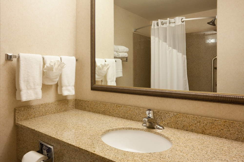 Bathroom, Holiday Inn Express Hotel & Suites Custer, an IHG Hotel