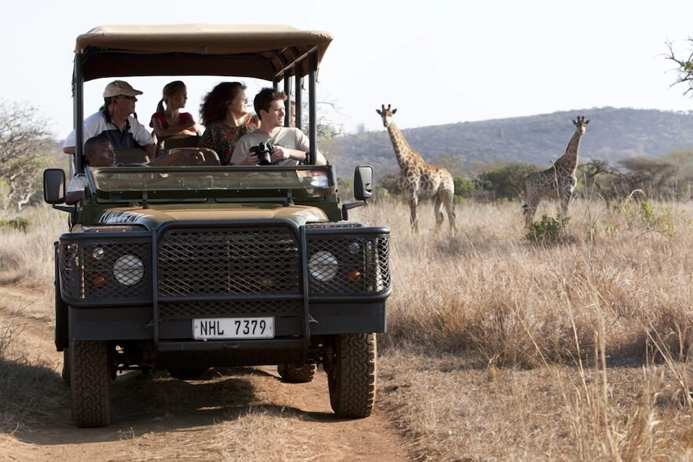 Safari, Ubizane Wildlife Reserve