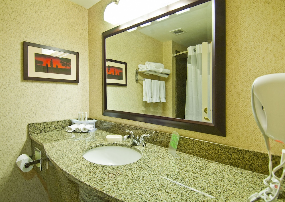 Bathroom, Holiday Inn Express And Suites Oro Valley - Tucson North