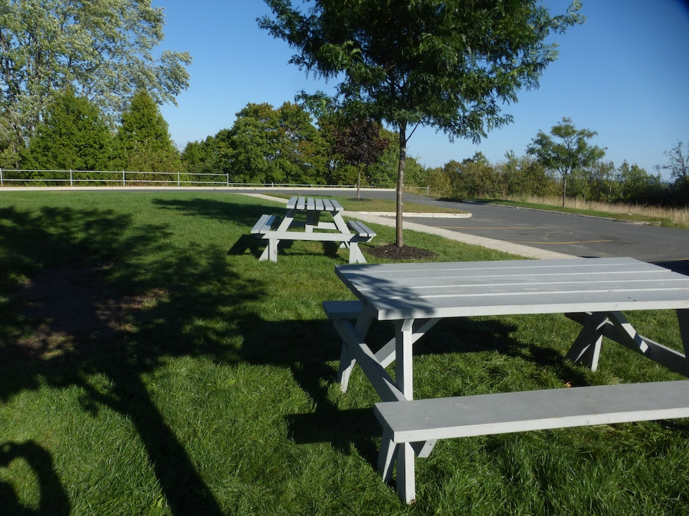 BBQ/Picnic Area, Super 8 by Wyndham Peterborough