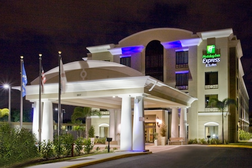 Holiday Inn Express & Suites Tampa USF Busch Gardens, an IHG Hotel