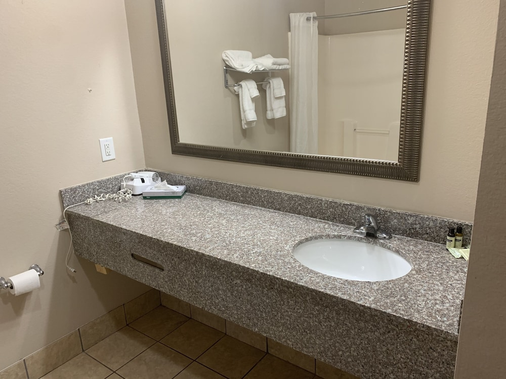 Bathroom, Hawthorn Suites by Wyndham Augusta