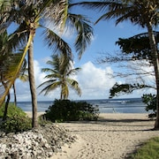 Island Oasis-secluded Luxury Beachfront Condo in Pelican Cove-minutes to Town